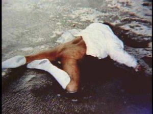 Фото с места преступлений маньяка Артура Шоукросса.