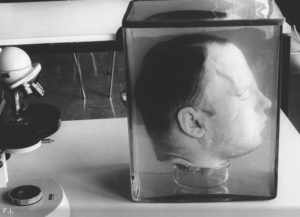 Фото маньяка и вампира Фридриха Генриха Карла Хаарманна.