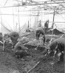 Раскопки на месте захоронений маньяка Денниса Нильсена.
