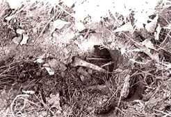 Фото с мест захоронений жертв - маньяком Дональдом Гаскинсом.