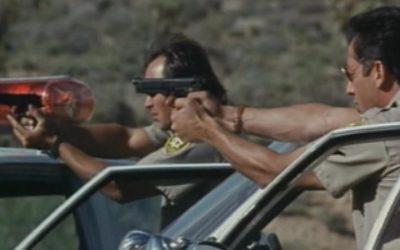 Фильмы про маньяков: Цветок у дороги. 1993 год. Триллер, криминал, детектив, серийный убийца.