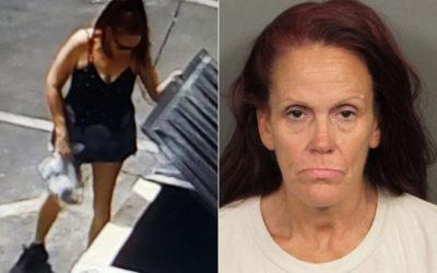 Скандалы и криминал: Женщина бросившая мешок ссемью щенками в мусорный контейнер,будет отбывать один год в тюрьме