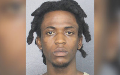 Скандалы и криминал: Мужчина был арестован за то, что угнал машину и бросил на заднем сиденье собаку-инвалида