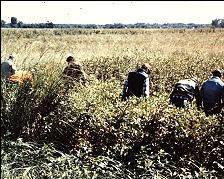 Фото с места обнаружения тела Дэнни Джо Эберла.