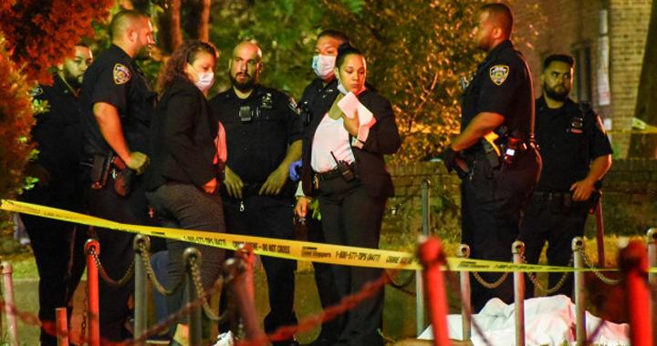 Криминальные новости: Полиция начала расследование очередных убийств, произошедших в различных частях города