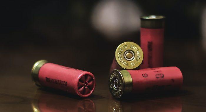 Скандалы и криминал: Стало известно, что 17-летний охотник погиб, упав с лестницы на собственное ружье