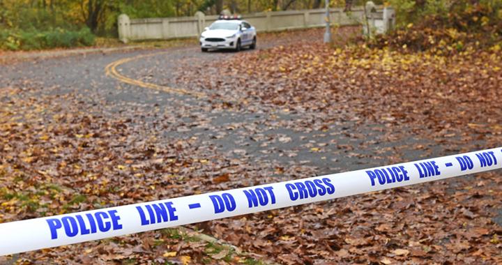 Криминальные истории: Дело о массовом убийстве