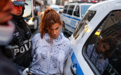 Скандалы и криминал: Обвинение в создании опасной обстановки полиция предъявило 52-летней Кэтлин Касильо