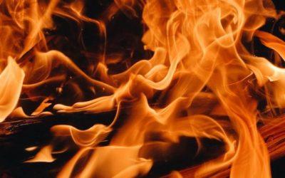 Криминальные новости: В среду представители полиции заявили, что смертельный лесной пожар, был результатом поджога